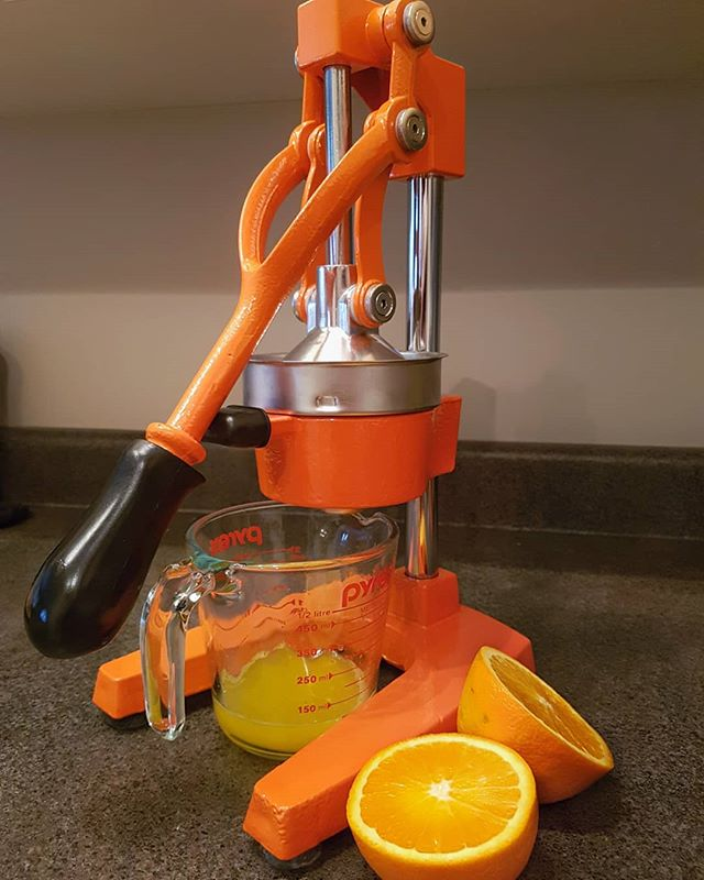 best manual juicer